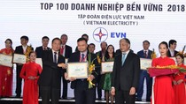"""EVN được vinh danh """"Doanh nghiệp bền vững tại Việt Nam năm 2018"""""""