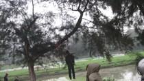 Phát hiện xác nam thanh niên chết trong tư thế treo cổ trên cây