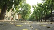 Đường phố Hà Nội như 'rộng thênh thang' trong những ngày nghĩ lễ