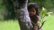 """Hình ảnh """"độc"""" về trẻ em miền núi không cần lời bình chỉ có ở VN (P29)"""