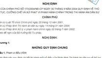 Bãi bỏ 9 văn bản quy phạm pháp luật do Chính phủ ban hành