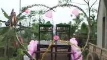 """Video: Rước dâu bằng… """"siêu xe trâu"""""""