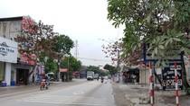 Thiếu thông tin đấu thầu ở quận Dương Kinh, Hải Phòng