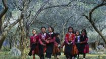 Độc đáo phong tục đón Tết của người H'Mông