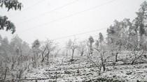 Hà Nội lạnh 9 độ C, miền Bắc đề phòng mưa tuyết, băng giá