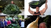 Lạ mắt với những giống cây trồng khổng lồ đạt kỷ lục Guiness