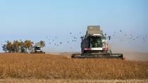 Báo Đức: Phương Tây rất thèm muốn đất nông nghiệp của Ukraine
