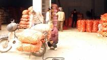 Buôn nông sản Trung Quốc: Cứ 2 ngày lãi 20 triệu đồng