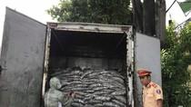 Phát hiện xe tải chở 3,5 tấn cá tạp, bốc mùi hôi thối từ Đà Nẵng đi Quảng Nam