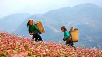 Chùm ảnh: Việt Nam đất nước tôi ơi