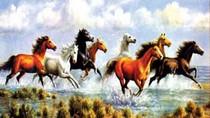 Tản mạn năm con ngựa