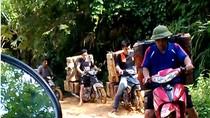 Trực diện cung đường vận chuyển gỗ lậu giữa ban ngày