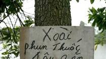 """Phì cười hình ảnh """"cực độc"""" của độc giả sưu tầm chỉ có ở Việt Nam (P7)"""
