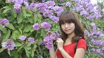 Nữ sinh Hà thành tạo dáng bên hoa bằng lăng tím