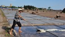 Những hình ảnh về diêm dân làm muối dưới cái nắng bỏng rát của mùa hè