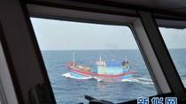 Tàu cá Việt Nam kiên cường bám biển, đương đầu Hải giám TQ ở Hoàng Sa
