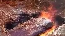 Video: Dân chết không chịu hỏa táng, chính quyền huyện đào mộ đốt xác