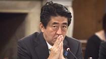 Tập Cận Bình, Shinzo Abe có thể gặp nhau 15 phút bên lề APEC