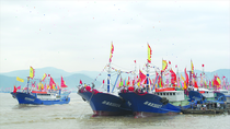 Trung Quốc đang xây dựng một hạm đội tàu cá chuẩn bị vơ vét Biển Đông