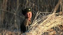 """""""Bảo vệ Triều Tiên vẫn là lợi ích của Trung Quốc"""""""