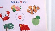 Sách vẽ cờ Trung Quốc: 'Ngụy biện, nực cười, không hiểu nổi'!