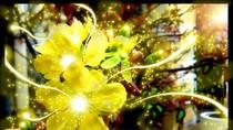 Những tấm thiệp chúc mừng năm mới xuân Giáp Ngọ 2014 (P4)