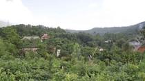 """Nhiều công trình không phép trên núi Hải Vân, Đà Nẵng có """"xử"""" được không?"""