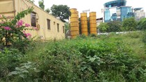 Mua đất vàng 1 tỷ đồng/m2, Tân Hoàng Minh dùng để… trồng cỏ và trông giữ xe
