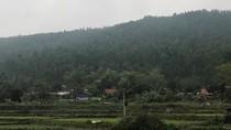 'Siêu nghĩa trang' trái quy hoạch, xâm phạm vùng đệm rừng quốc gia Tam Đảo?