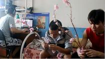 """Gala """"Xuân SV"""" gây quỹ ủng hộ người nghèo Việt Nam"""