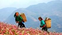 """10 điểm du lịch hoang sơ hấp dẫn """"khó cưỡng"""" ở Việt Nam"""