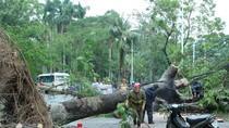 Những hình ảnh tan hoang sau khi siêu bão Sơn Tinh đi qua