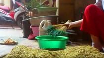 """Video: Sốc với """"công nghệ"""" nhuộm cốm xanh bằng phẩm màu"""