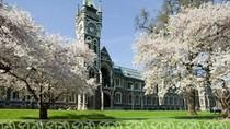 Cơ hội du học New Zealand với chi phí rẻ