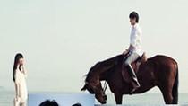 Cầu hôn ngoạn mục: Lừa ra đảo, lẻn vào nhà, cưỡi ngựa, lên máy bay