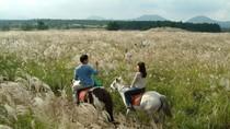 Không thể bỏ lỡ hành trình nghỉ dưỡng cao cấp tại thiên đường tuyệt đẹp Jeju