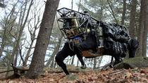 Top 5 robot chạy nhanh nhất thế giới