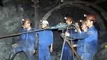 Chủ động phòng ngừa tai nạn lao động
