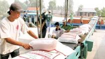 Năm 2030 Việt Nam sẽ có thương hiệu gạo hàng đầu thế giới
