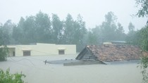 Chính phủ hỗ trợ Quảng Bình 1.500 tấn gạo cứu trợ hộ dân vùng ngập lũ