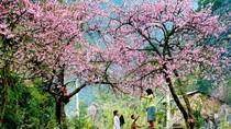 5 hành trình du lịch lý tưởng cho ngày giao mùa Đông – Xuân