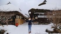Hoa nở trong tuyết ở Fukushima