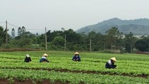 Bao giờ Việt Nam lên hạng trong chuỗi giá trị toàn cầu?
