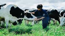 Tự hào sữa organic đạt chuẩn quốc tế tại Việt Nam