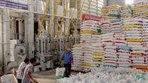 Thủ tướng yêu cầu khẩn trương báo cáo chiến lược xuất khẩu gạo