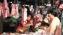 Kiểm tra hệ thống giết mổ, tiêu thụ sản phẩm ngành chăn nuôi lợn