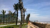 Thanh Hóa phải báo cáo Thủ tướng vụ chuyển đổi đất rừng phòng hộ làm sân golf