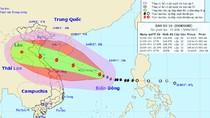 Khẩn cấp ứng phó với bão số 10 có gió giật tới cấp 15
