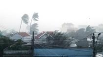 Bộ Y tế họp khẩn khắc phục hậu quả sau bão số 12