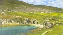 Bài dự thi số 101: Điều tôi muốn với Ireland